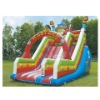 2010 New GS Inflatable bouncy castle