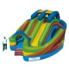 2010 New GS Wet inflatable castle
