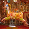 24 rides carousel horse for sale