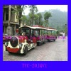 Amusement park train with electric motor