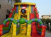 Inflatable Slide / Inflatable Water Slide (CE/UL certificate,At Low Price)